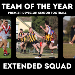 Premier Division Football Team of the Year – Extended Squads